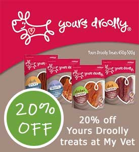 20% Off Yours Droolly