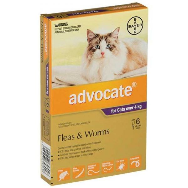 ADVOCATE Cat Large >4kg 6-Pack