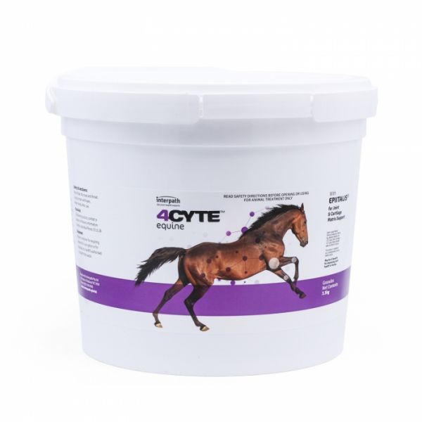 4Cyte Equine 3.5kg Pail
