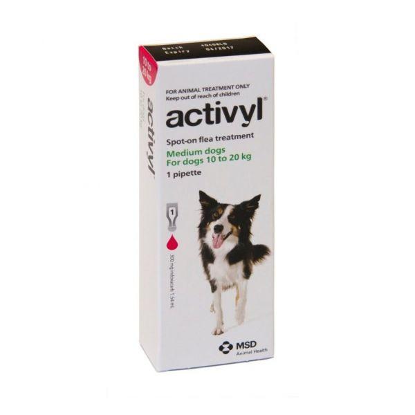 Activyl Medium Dog 10-20kg single