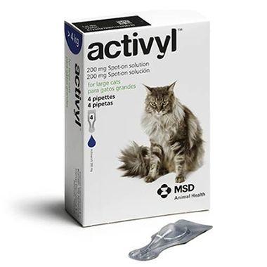Activyl Cat Large >4kg 4-pack  ( exp end July 2021)