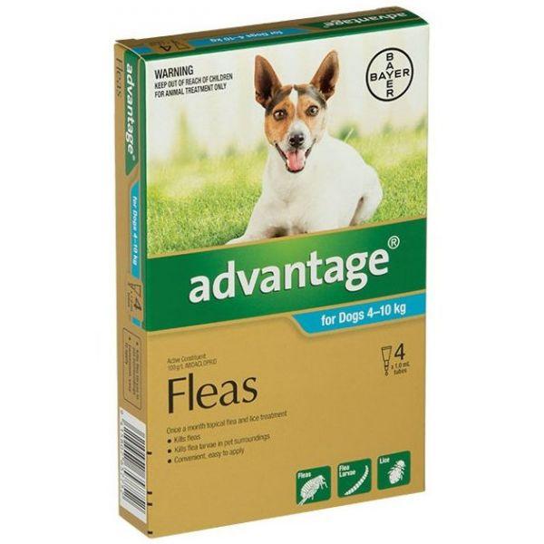 Advantage Medium Dog 4-10kg 4-Pack