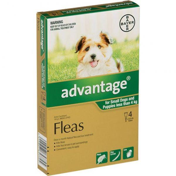 Advantage Puppies/Small Dogs