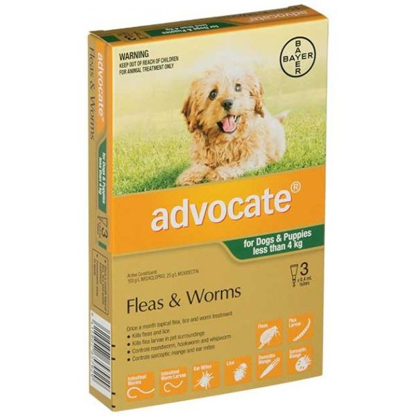 ADVOCATE Small Dogs/Puppies