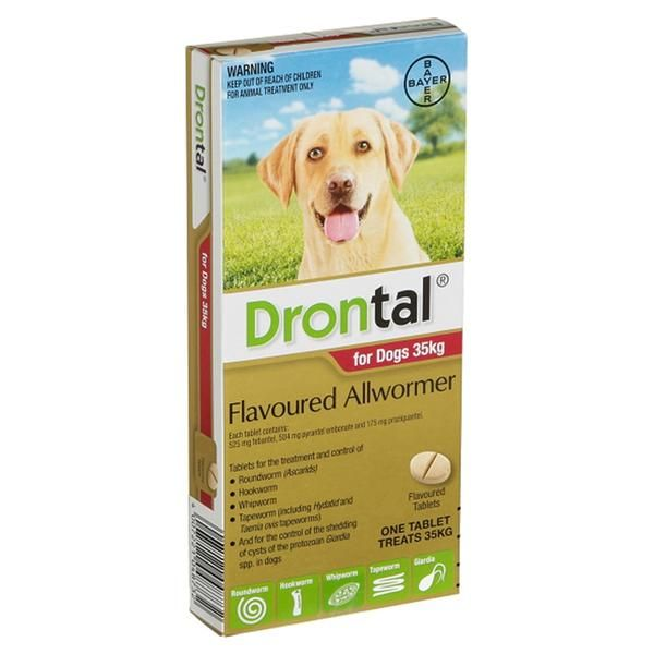 Drontal For Large Dogs Flavoured Allwormer (Sold Per Tablet)
