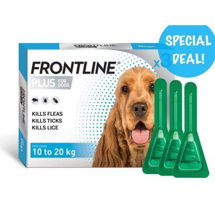 Frontline Plus for Medium Sized Dogs 10-20kgs 3 x 3 packs Bulk Deal ( exp 12/21 )