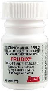 Frudix frusemide 40mg  100 tablets in a pot