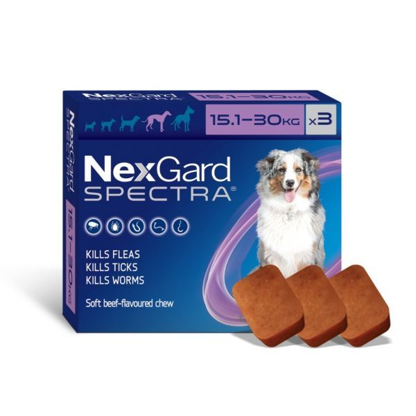 Nexgard Spectra Large Dog 15.1-30kg Two 3 packs WITH FREE KONG TOY