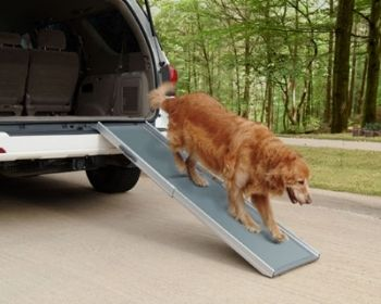 Telescopic dog ramp
