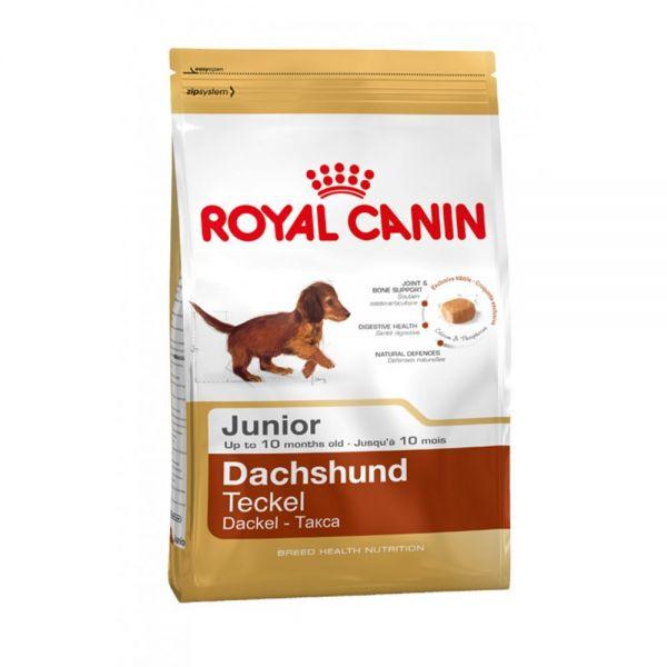 Royal Canin Adult Dachsund 1.5kg