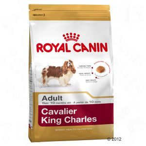 Royal Canin Adult Cavalier King Charles 1.5kg