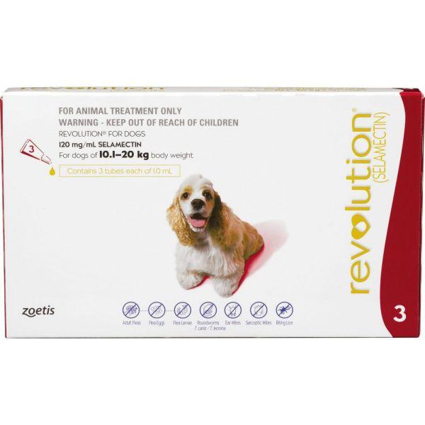 Revolution for Medium Dogs 10-20kg - 3 pack